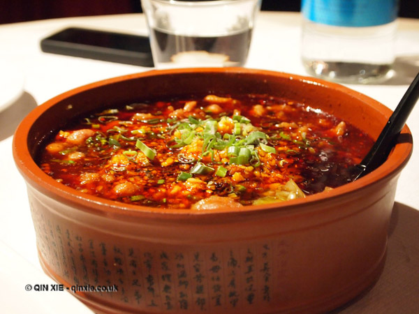 Spicy fish soup at empress of sichuan in pursuit of food for Spicy fish soup