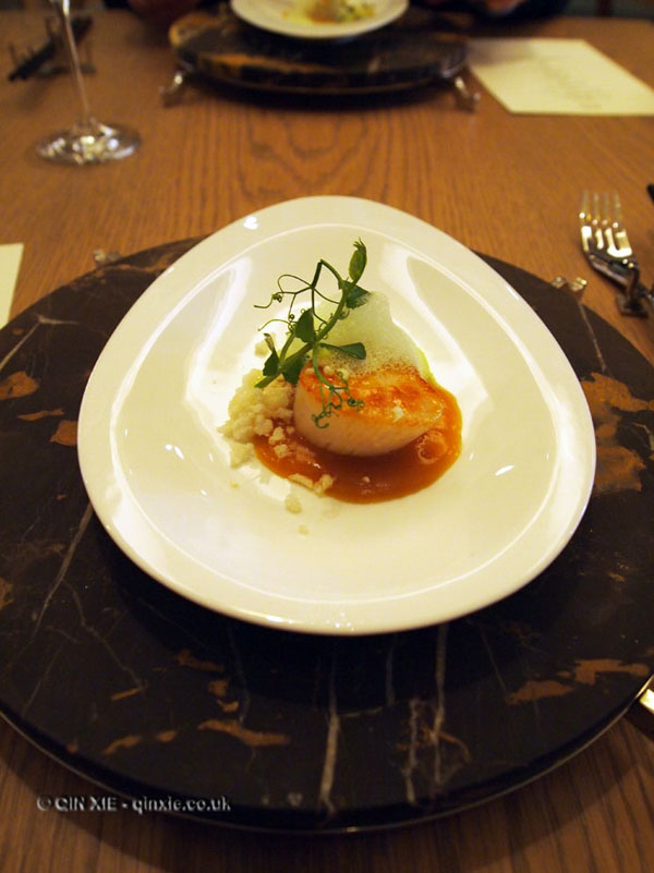Scallop, Bo London