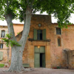 Tree over entrance, Abbaye de Valmagne, Villeveyrac