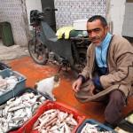 Man selling fish, Tunisia