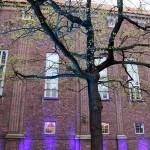 Tree, Bocuse d'Or gala dinner, Stockholm