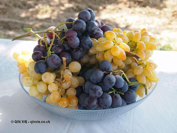 Grapes in Georgia