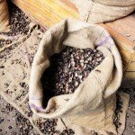 Nutmeg shells, Gouyave nutmeg factory, Grenada