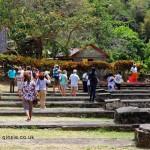 Visitors, Belmont Estate, Grenada